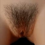 PUBIC HAIR #5